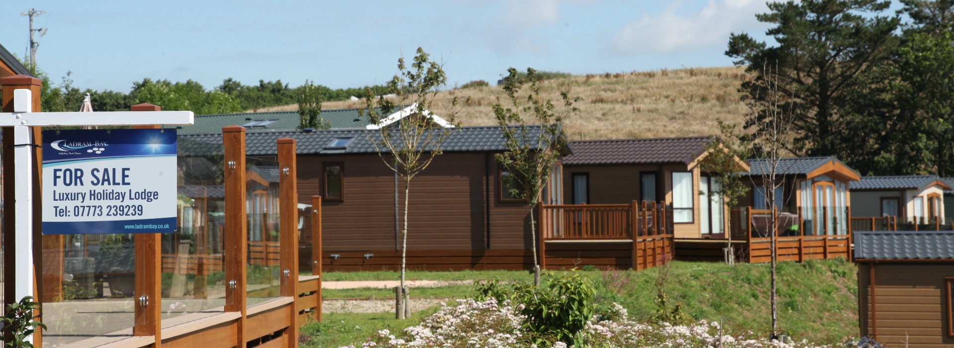 devon holiday homes for sale ladram bay holiday park