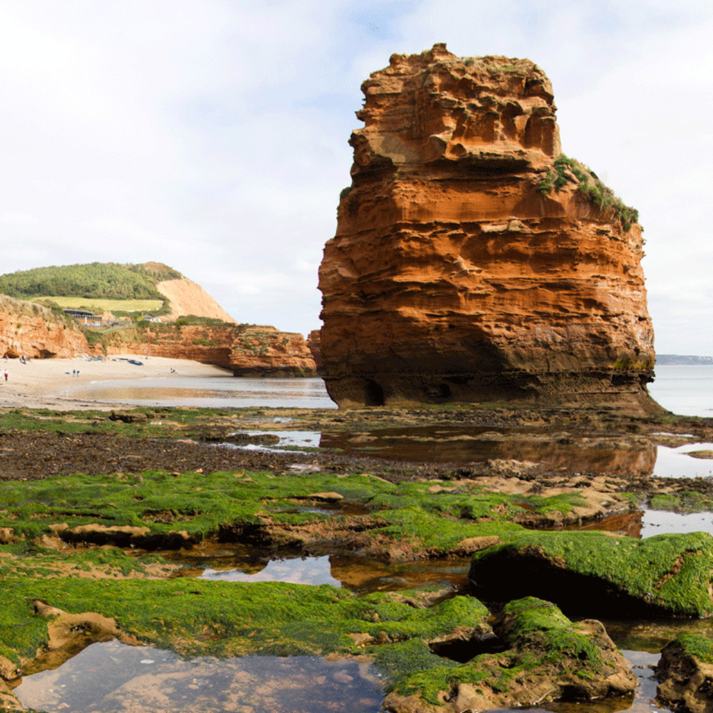 Rock-pools-at-Ladram-Bay-in-East-Devon